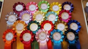 well done/winner/special/clear round  rosettes for dogs,horse,pony, sport days