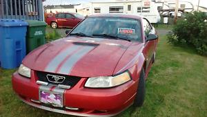 Mustang 2000