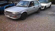 Toyota  Corolla 4cyl Two Wells Mallala Area Preview