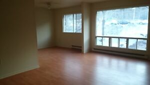 LARGE 3 BEDROOM / 2 LEVEL– 1 ½ BATHS - WITH TONS OF STORAGE!!!