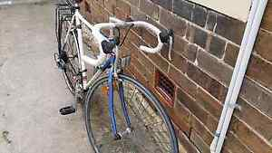 Vintage racing bicycle. Enmore Marrickville Area Preview