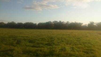 short term rental available for suitabe for horse owner Perth CBD Perth City Preview