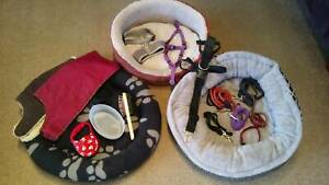 Pet Beds, Grooming, Coats, Leads & Harnesses
