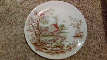Beautiful Vintage plate.