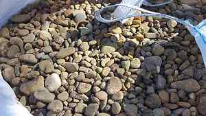 Outdoor Pebbles Hornsby Hornsby Area Preview