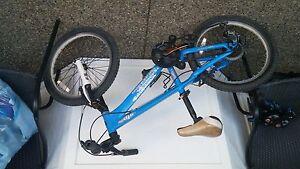 20 inch Giant kids bike