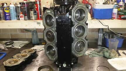 250XS power head . Joyner Pine Rivers Area Preview