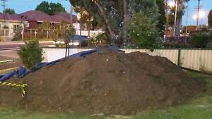 garden soil Fairfield West Fairfield Area Preview