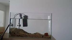 medium fish tank and all accessories Southport Gold Coast City Preview