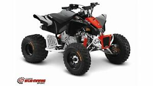 2018 Can-Am DS 90 X