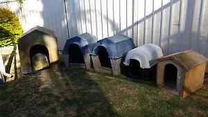 Large Kennels $ 35 Each Small Timber Kennel $ 10  Large Plastic D Huntingdale Gosnells Area Preview