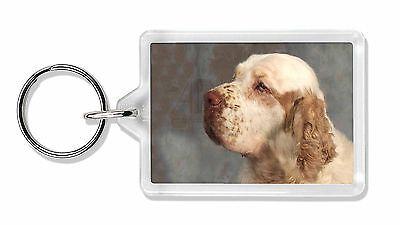Clumber Spaniel Dog Photo Keyring Animal Gift, AD-CS1K