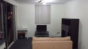 Student share accomodation near UTS, Sydney Uni & CBD Chippendale Inner Sydney Preview