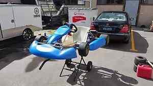 Rotax 125 go kart Llandilo Penrith Area Preview