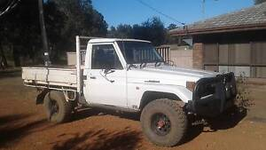 1994 Toyota LandCruiser Ute Collie Collie Area Preview