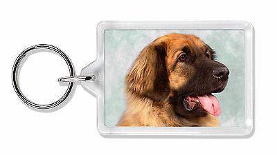 Blonde Leonberger Dog Photo Keyring Animal Gift, AD-LE1K