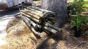 Pine Fencing post Mandurah Mandurah Area Preview