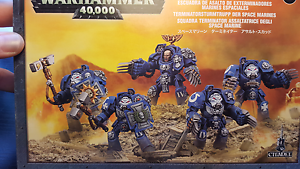 Space Marine Terminator Assult Squad Parkdale Kingston Area Preview