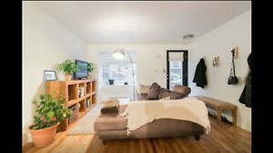 1 chambre/bedroom - Village - Metro Beaudry