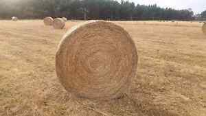 Hay Rolls / Meadow Hay Yalyalup Busselton Area Preview