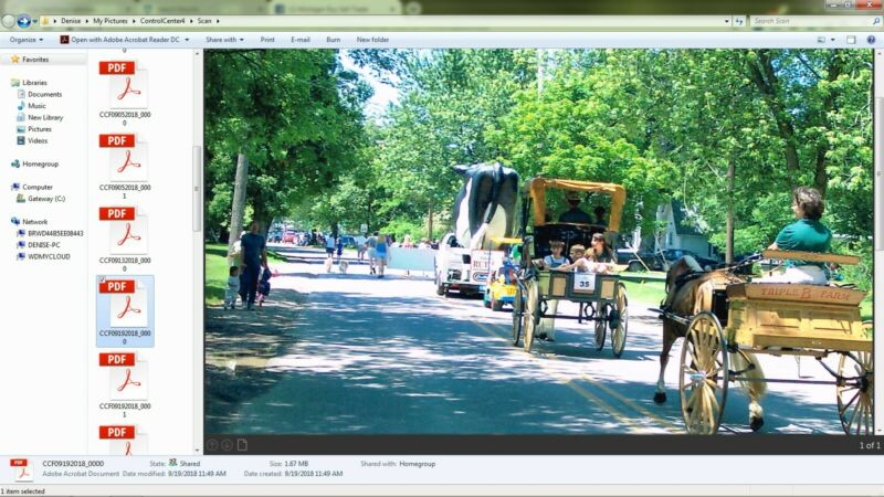Horse Driving : Carriage, Combined Driving, Harness Racing, Horse-Drawn Vehicle,