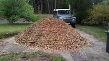 Wood Chips Available Free Of Charge - You Collect St Ives Chase Ku-ring-gai Area Preview