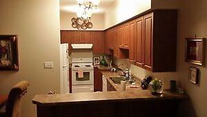 Beautiful 2 bedroom 2 bathroom condo  Windsor Region Ontario image 2