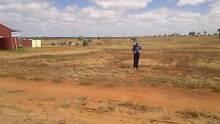 PROSPECTING Kalamunda Kalamunda Area Preview