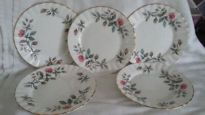 Royal Stafford Bramble Rose 16.5cm Tea Plate