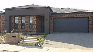 31 Bertie Street, Manor Lakes Wyndham Vale Wyndham Area Preview