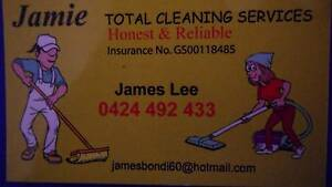 Jamie cleaning Frenchs Forest Warringah Area Preview