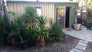 GRANNY FLAT Margate Redcliffe Area Preview