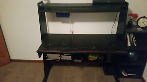 Solid wood study desk $40 North Beach Stirling Area Preview