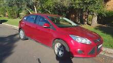 2013 Ford Focus Hatchback Marsfield Ryde Area Preview