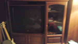 Huge TV and Entertainment Unit