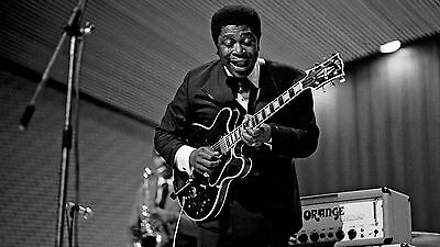 BB KING 8X10 GLOSSY PHOTO PICTURE