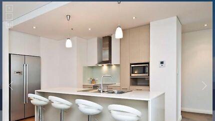 Modern Apartment 580 Hay Street