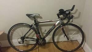 Scott elite sports bike. Rockdale Rockdale Area Preview