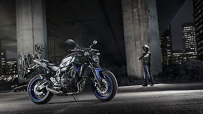 Wendig und agil: Yamaha MT-07. (© Yamaha)