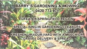 Lawns wanted ! Springfield Ipswich City Preview