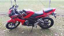 Cbr125 2008 lams approved 10/16rego Tenambit Maitland Area Preview