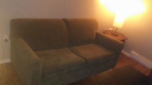 Hide a bed couch for sale
