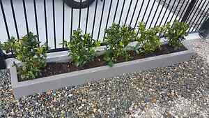 Planter Boxes Custom Made Paddington Brisbane North West Preview