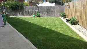 INSTANT NATURAL TURF/LAWN LAYING - Call for a free quote Bundoora Banyule Area Preview