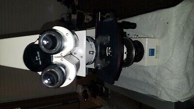 Zeiss Axiophot Trinocular Microscope