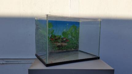 Two Fish tank for sale