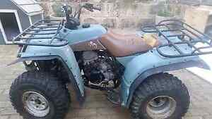 Yamaha YFB250 (G) Timberwolf  Quad - Sold..pending pickup Leeming Melville Area Preview