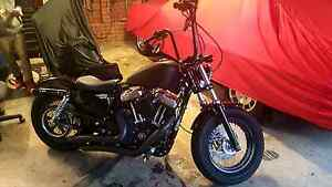 Harley-Davidson Forty-Eight Hallam Casey Area Preview