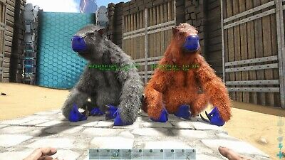 Ark Survival Evolved Xbox One PVE Boss Stat Megatherium Breeding Pair for sale  Shipping to India