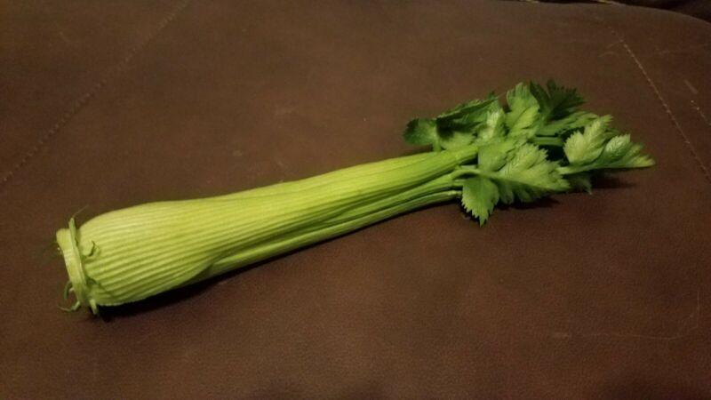 Fake Celery Stalk
